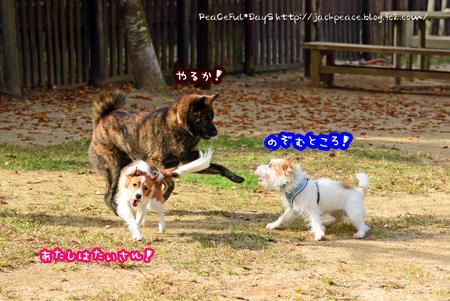 151106_yuasa8.jpg