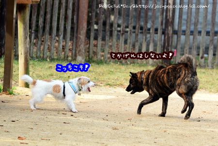 151106_yuasa9.jpg