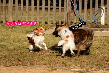151112_yuasa88.jpg