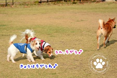 151122_yuasa.jpg