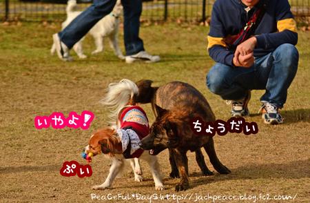 151122_yuasa16.jpg