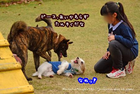 151122_yuasa17.jpg