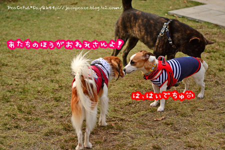 151122_yuasa33.jpg