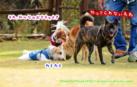151122_yuasa5.jpg