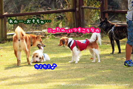 151122_yuasa6.jpg