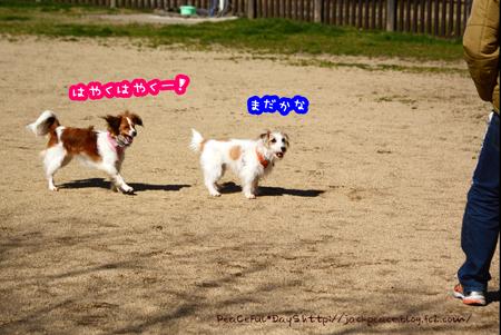 160315_yuasa.jpg