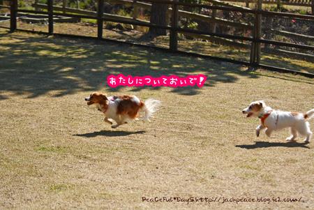 160315_yuasa13.jpg