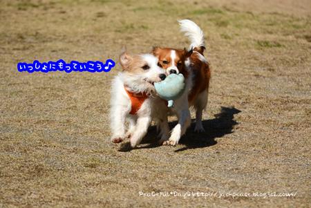 160315_yuasa4.jpg