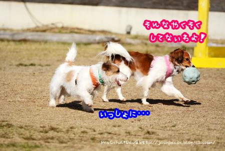 160315_yuasa5.jpg