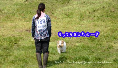 160320_pd14.jpg
