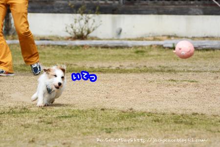 160325_yuasa1.jpg
