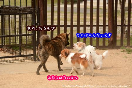 160331_yuasa16.jpg