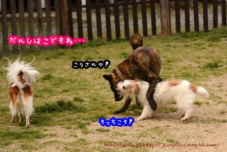 160331_yuasa23.jpg