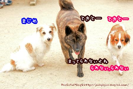 160331_yuasa27.jpg