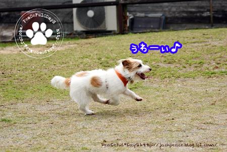 160408_yuasa1.jpg