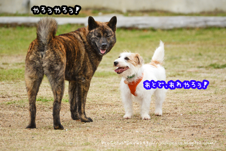 160408_yuasa12.jpg