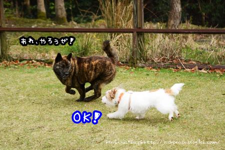 160408_yuasa15.jpg