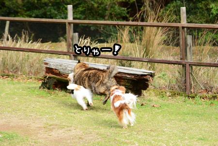 160408_yuasa16.jpg