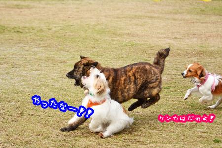 160408_yuasa17.jpg