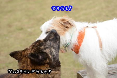 160408_yuasa18.jpg