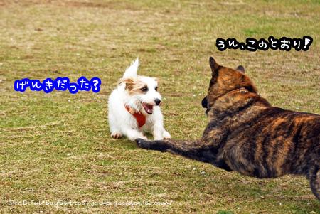 160408_yuasa8.jpg