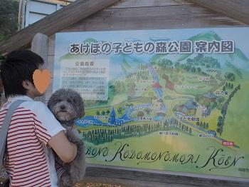 あけぼの子どもの森公園20150922-1