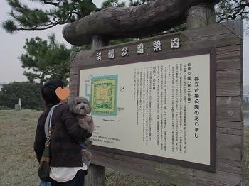 お台場さんぽ20151010-17