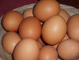 タクマ養鶏場の鶏卵20151106