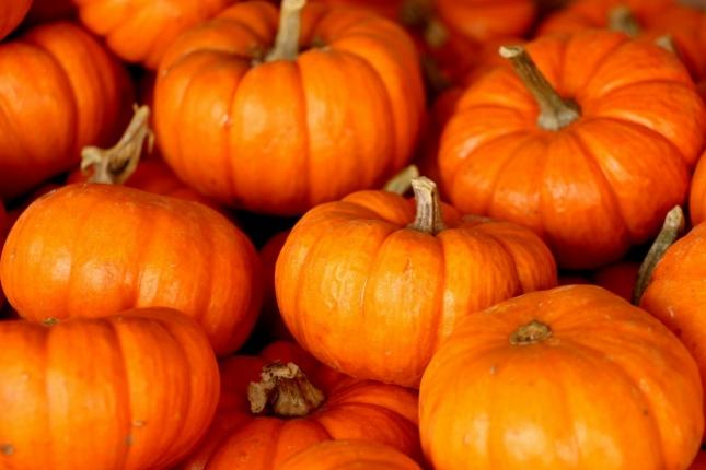 pumpkin-220122_1280.jpg