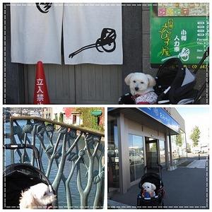 2015小樽運河9