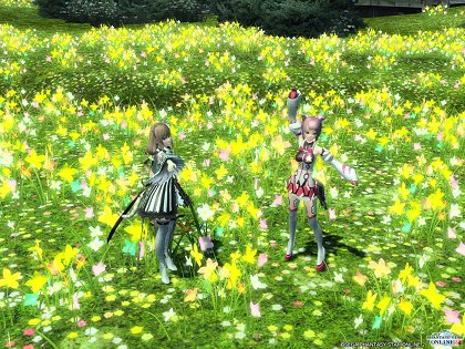 pso20151204_235841_013.png