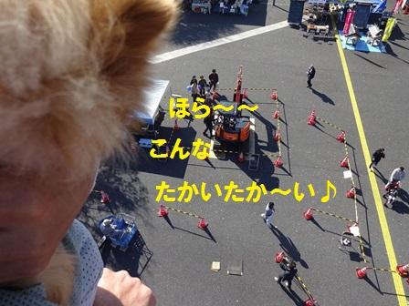 20151026133247bf5.jpg