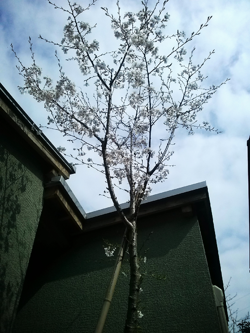 16-04-03-14-59-51-372_deco.jpg