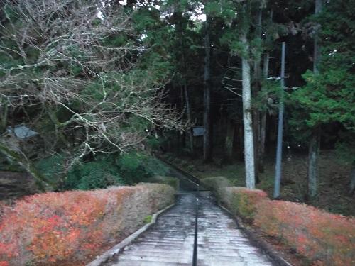 takao-2015-21.jpg