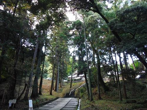 takao-2015-4.jpg