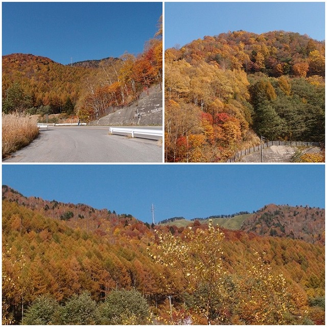 2015-10-19a.jpg