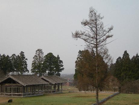 払田柵 建物