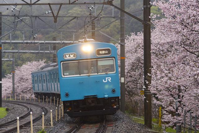 160404 JRW 103-166 hanwa yamanakadani-1