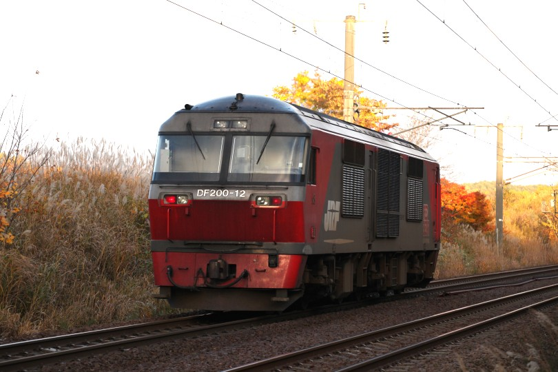 DF12IMG_9779-2.jpg