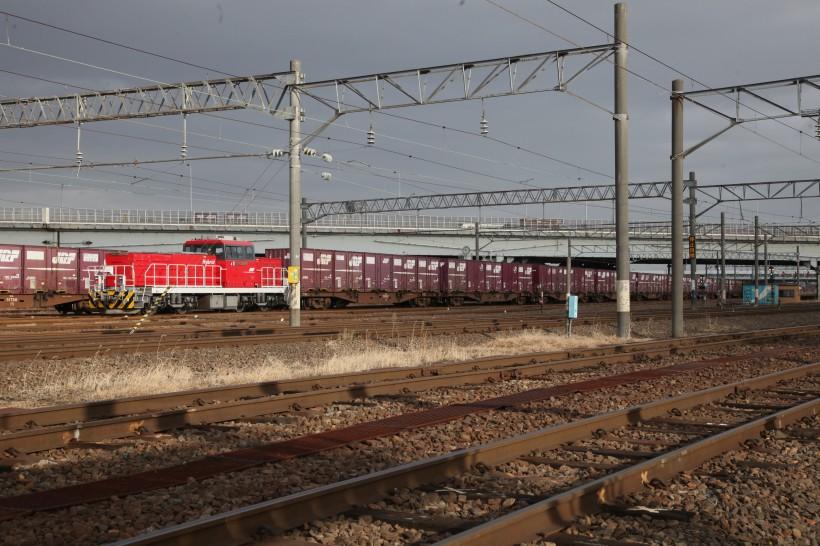 HD501IMG_0452-2.jpg