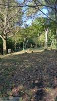 20151012水神さん葛山城跡051