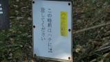 20151012水神さん葛山城跡063