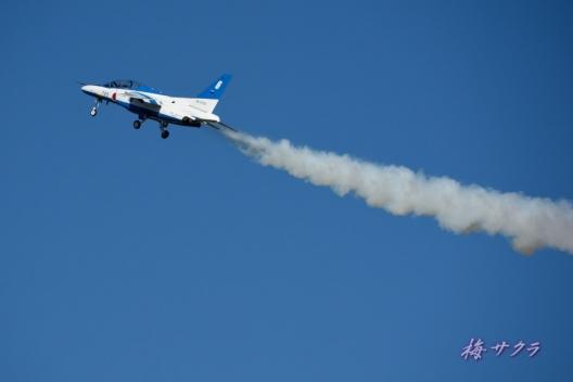 入間航空祭2ブルーインパルス(4-2)変更済