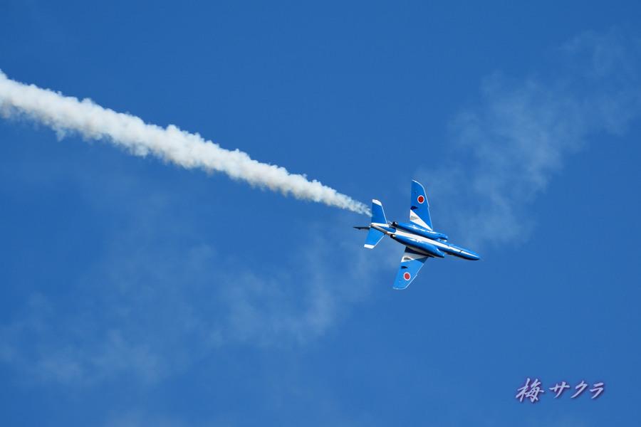 入間航空祭2ブルーインパルス15