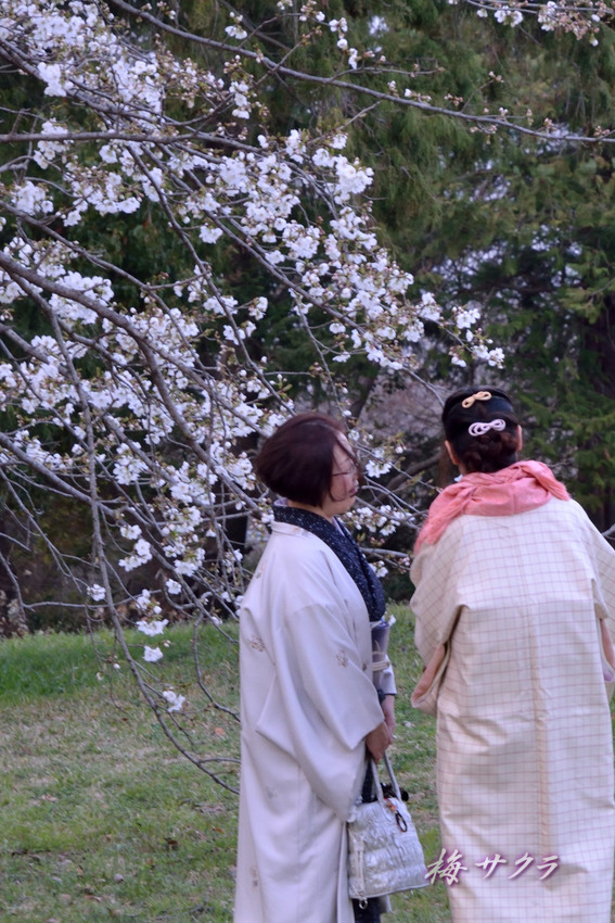 昭和記念公園2(8)変更済