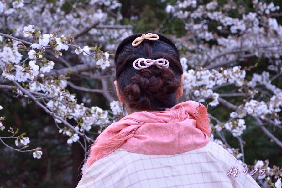昭和記念公園2(9)変更済