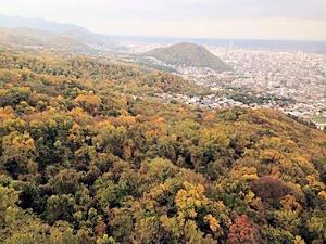 秋の藻岩山