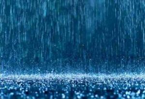 青くにじむ雨の