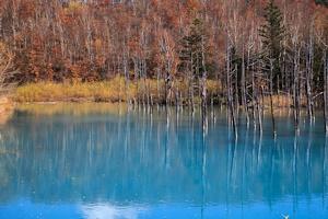晩秋の青い池