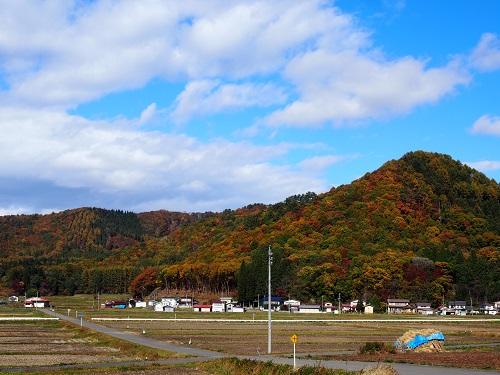 satoyama2151031.jpg